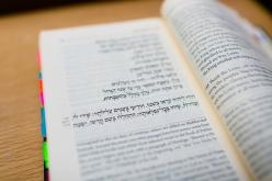 Close-up of siddur text
